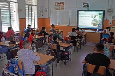 programa de habitos saludables virtual berja 2020